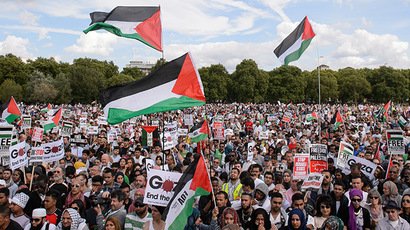 Pro-Palestinian demonstrators listen to speeches holding placards and waving Palestinian flags at a mass rally in support of the embattled Gaza Strip in London on August 9, 2014. (AFP Photo / Leon Neal)