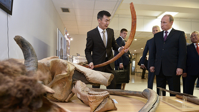 Meet Yuka, age 39,000: Best-preserved mammoth ever found goes on display in Moscow (VIDEO)
