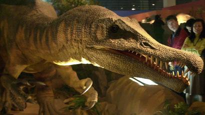 A replica of Spinosaurus (AFP Photo/Patrick Lin)