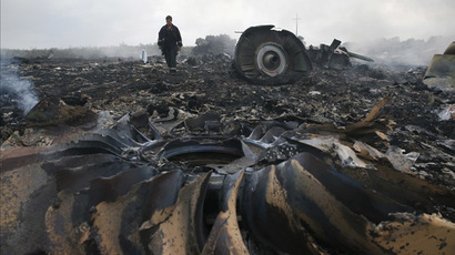 An Emergencies Ministry member walks at a site of a Malaysia Airlines Boeing 777 plane crash near the settlement of Grabovo in the Donetsk region, July 17, 2014. (Reuters/Maxim Zmeyev)