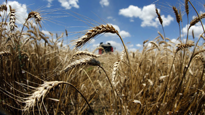Monsanto to pay $2.4mn to farmers over 2013 GMO-wheat scare