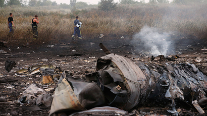 MH17 might have been shot down from air – chief Dutch investigator