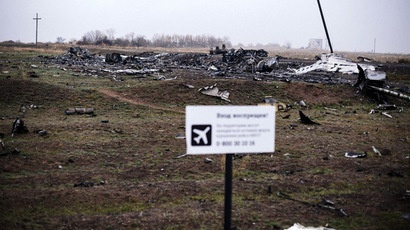 A picture taken on November 7, 2014, shows parts of the Malaysia Airlines Flight MH17 at the crash site in the village of Hrabove (Grabovo), some 80km east of Donetsk. (AFP Photo/Dimitar Dilkoff)