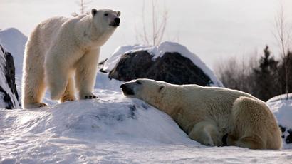 On Alaska visit, Obama pushes Arctic agenda