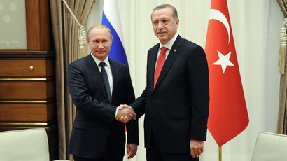Russian President Vladimir Putin (L) and President of Turkey Recep Tayyip Erdogan during a meeting in the Presidential Palace in Ankara December 1, 2014. (RIA Novosti / Michael Klimentyev)