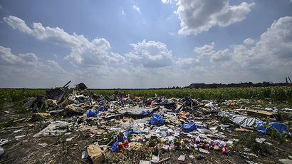 A photo taken on July 23, 2014 shows the crash site of the downed Malaysia Airlines flight MH17, in a field near the village of Grabove, in the Donetsk region. (AFP Photo/Bulent Kilic)