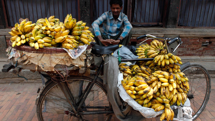 World's most popular banana faces eradication by deadly fungus