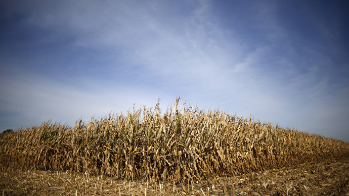 Midwestern landowners, tenants at odds after farm boom tapers off