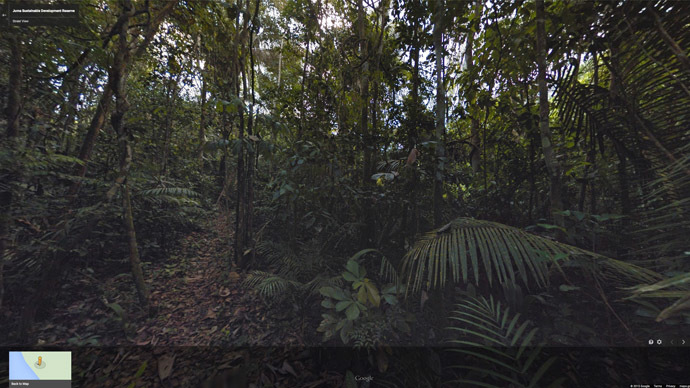 Brazilian rainforest now mapped on Google Street View zipwire cams