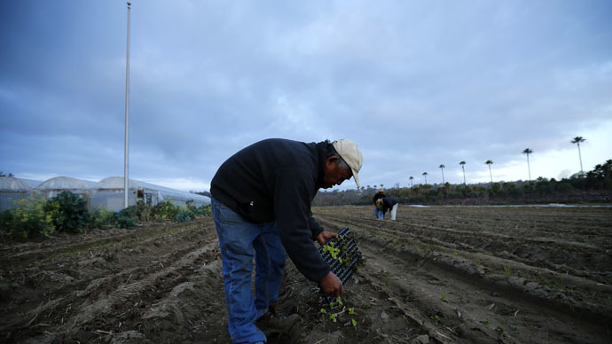 North California farmers ditching crops to sell water to south