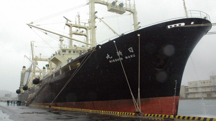 'First time in 30 years': Japan whaling ships return from Antarctic trip EMPTY