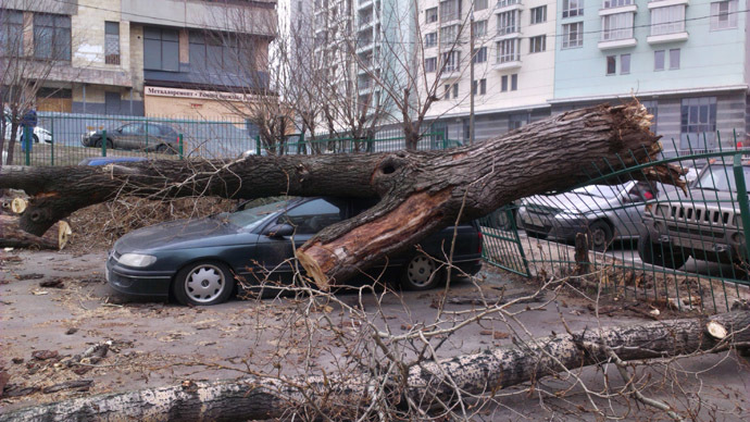 A tree fallen as the result of the hurricane on one of the streets in Moscow. (RIA Novosti/Aleksander Racimor)