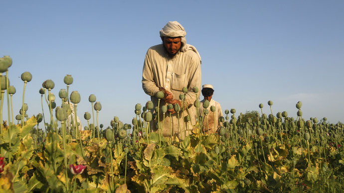 Afghan opium cultivation 'grew 40-fold' during US operation - Russia Security Council chief