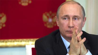 Russian President Vladimir Putin. (RIA Novosti/Sergey Guneev)
