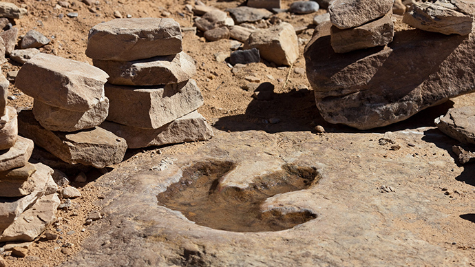 Dinosaur footprints (Image from wikipedia.org)