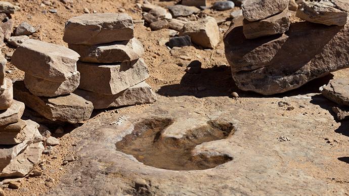 DinoDrone! Australian scientists use UAVs to track dinosaur footprints