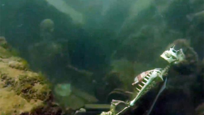 Weekend at Bernie's 3: Snorkeler discovers underwater skeleton tea party