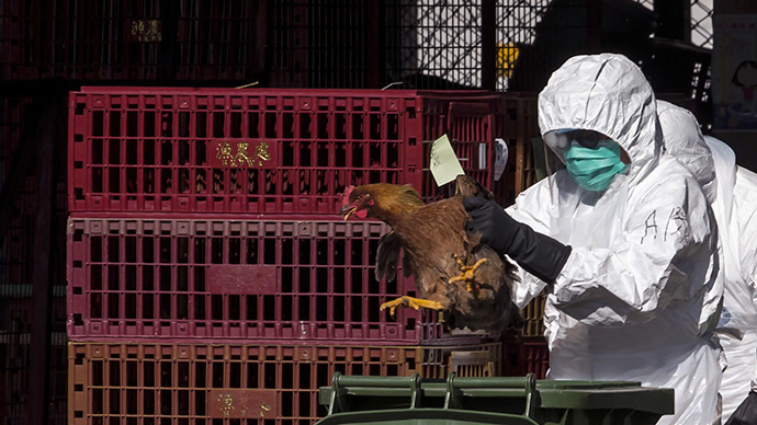 Nebraska becomes 4th state to declare emergency over bird flu