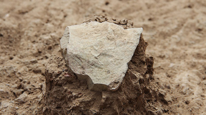 A large stone tool is revealed amid the sediment at the Lomekwi excavation site next to Lake Turkana in Kenya. ( MPK-WTAP)