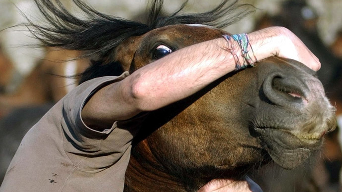Forget bulls, Spaniards wrestle horses for fun too (VIDEO)