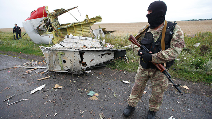A man stands at the crash site of Malaysia Airlines flight MH17, near the settlement of Grabovo in the Donetsk region, July 18, 2014 (Reuters / Maxim Zmeyev)