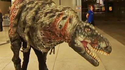 The reopening of an Australian Museum of Natural History has been a real thrill for visitors (an image from the video)