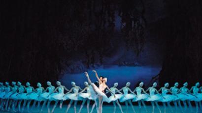 """""""Swan Lake"""" (image from www.mariinsky.ru)"""