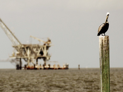 A pelican rests on a piling with an oil rig in the background April 18, 2011 in Dauphin Island, Alabama. Dauphin Island's beaches were impacted by oil from the BP oil spill and oiled pelicans became a devastating symbol of the spill's toll. April 20th marks the one-year anniversary of the worst environmental disaster in U.S. history. (Mario Tama/Getty Images/AFP)