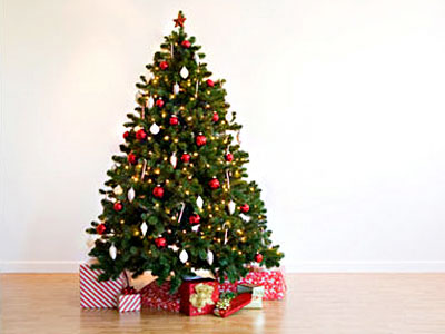 Christmas trees and flowers leading the Christmas New Year sales charge