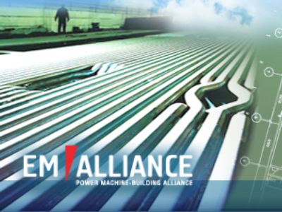EMAlliance posts FY 2009 net profit of 355 million Roubles