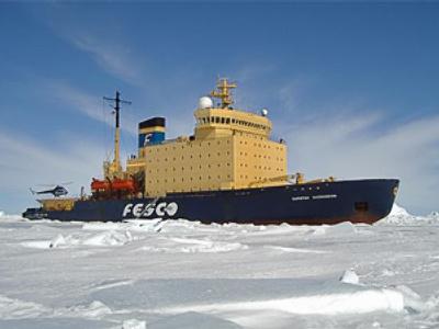 Fesco posts 1H 2010 net loss of $28.05 million