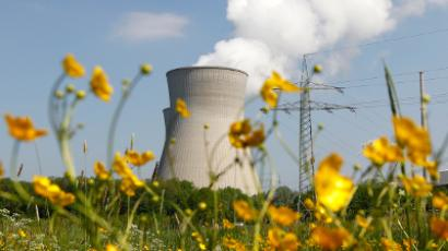 Nuclear power plant of Gundremmingen is pictured at a sunny day next to a flowering meadow (Reuters/Michaela Rehle)
