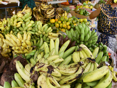 Latin America and EU end 20 year old 'banana war'