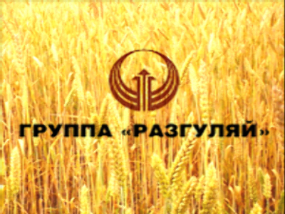 Razgulay chief calls for increased support for Russian agriculture