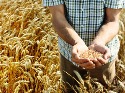 Russia needs to limit grain exports - Viktor Zubkov