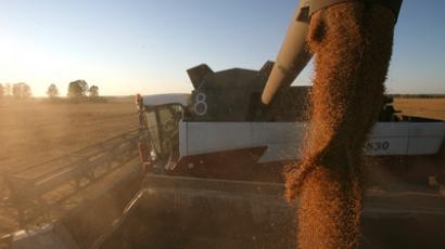 Russia's grain has its own future(s)