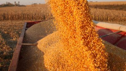 Russian authorities open granaries to boost export