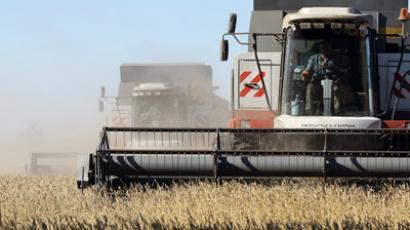 Russia's grain has its own future(s) (RIA Novosti / Alexandr Kryazhev)
