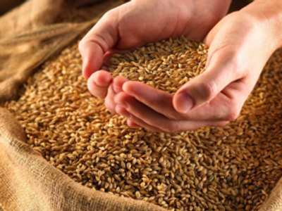 Grain speculation as prices rise prompts intervention comment