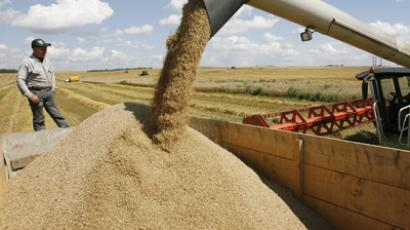 Russia considers grain export curb to keep prices down