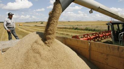 US grain company seeks a piece of Russian wheat pie