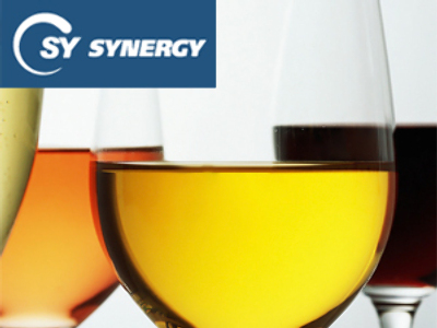 Synergy posts 1H 2009 Net Profit of 512 million Roubles