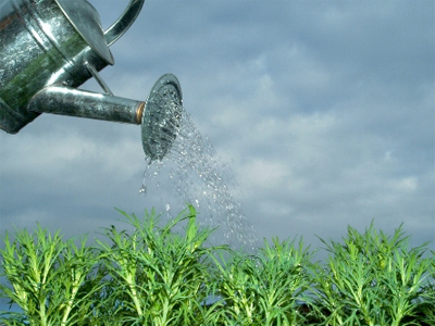 UralChem posts 1Q 2011 net profit of $161 million under IFRS