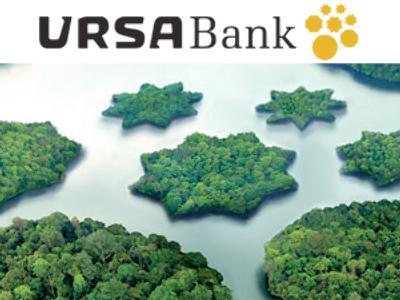 Ursa Bank posts FY 2008 Net Income of 1.59 billion Roubles