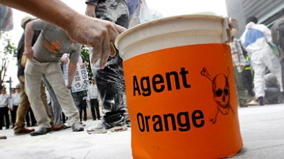 The white powder is flour, used to symbolise Agent Orange. REUTERS/Jo Yong-Hak (South Korea)