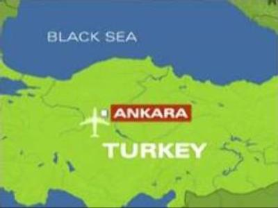 Airplane hijacker detained by Turkish authorities