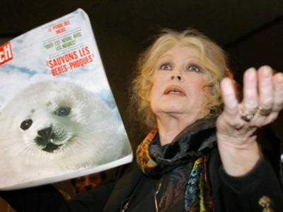 Brigitte Bardot (AFP Photo / Fabrice Coffrini)