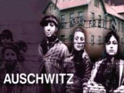 Controversy remains over Auschwitz Museum exhibition