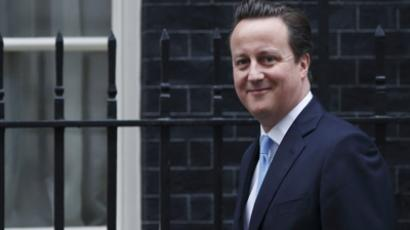 British Prime Minister David Cameron (AFP Photo / Justin Tallis)