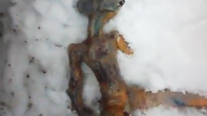 This may be a dead alien (video from http://www.youtube.com/user/Allnewsweb)